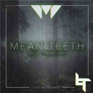 Mean Teeth - Drifter / Forest download mp3