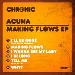 Acuna - Making Flows EP mp3 download
